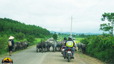 Ride the best motorcycle roads in Vietnam