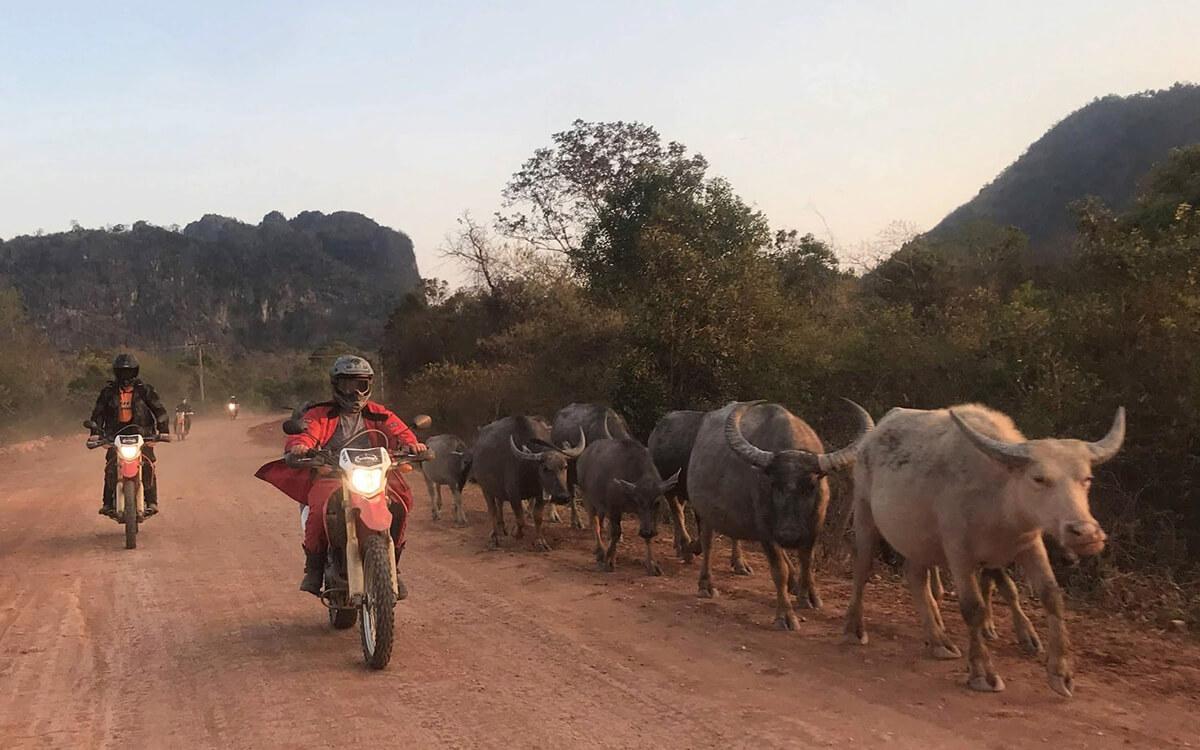 DAY 3: NINH BINH TO THANH HOA (90 KM - 2 HOURS RIDING)